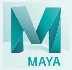 Tom Westermann - Maya erfaring