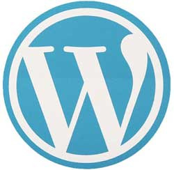 Tom Westermann - WordPress erfaring